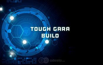 The Tough Gara Warframe Build