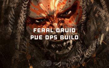 The Best Feral Druid PvE DPS build