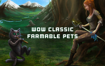 WoW Classic Pets Guide - Farmable and Expensive Pets
