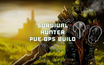 The Best Survival Hunter PvE DPS build