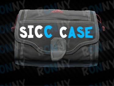Small S I C C case (12.11)