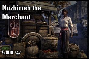 Nuzhimeh the Merchant [NA-PC]